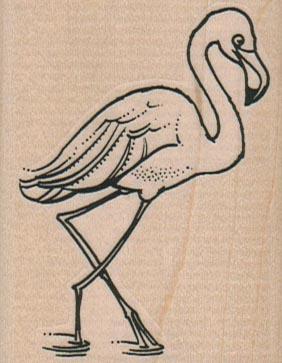 Flamingo Wading 2 x 2 1/2-0