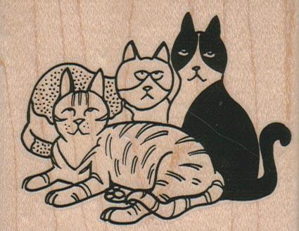 Cat Trio 3 x 2 1/4-0