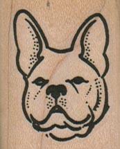French BullDog Head 1 1/4 1 1/2-0