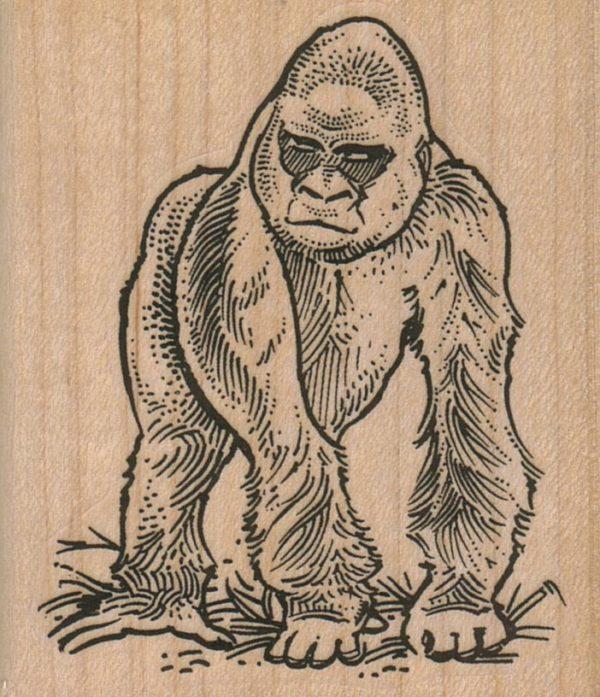 Gorilla My Dreams 2 1/2 x 2 3/4-0