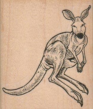 Kangaroo Hopping 3 1/4 x 3 3/4-0