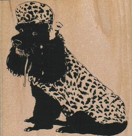 Poodle In Spotted Coat & Hat 3 x 3 1/4-0
