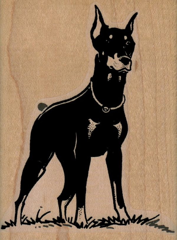 Doberman Dog Standing 2 1/2 x 3 1/4-0