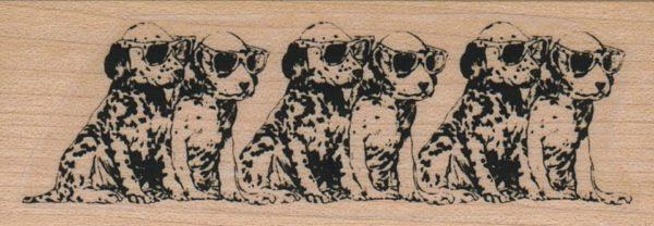 Dog Line 1 1/4 x 3 1/4-0