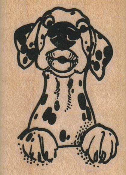Pucker Dog 1 1/2 x 2-0