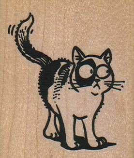 Cat Looking Askance 2 x 2 1/4-0