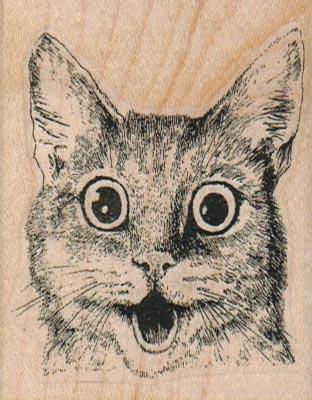 Surprised Kitty Cat 2 1/4 x 2 3/4-0