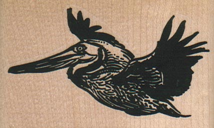 Pelican Flying 3 x 1 3/4-0