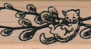 Pussy Willows 1 1/4 x 3 1/2-0