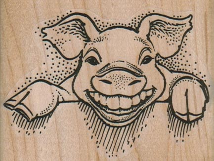 Pig Smiling/Teeth 3 x 2 1/4-0