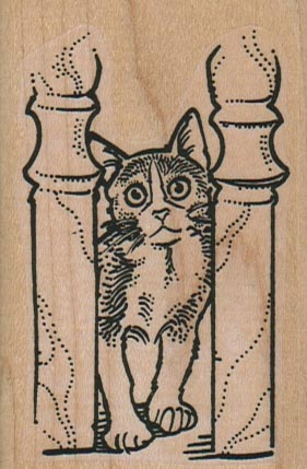 Kitty Between Posts 2 x 3-0