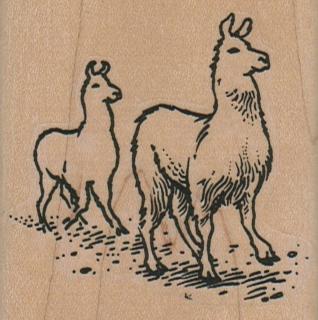 Llama Duo 2 1/4 x 2 1/4-0