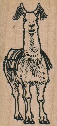 Llama With Blanket 1 1/2 x 3-0