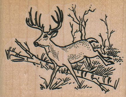 Running Deer 3 x 2 1/4-0