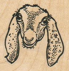 Goat Face 1 3/4 x 1 3/4-0