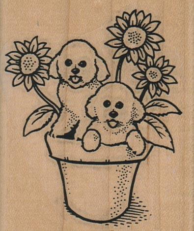 Bichons & Sunflowers 2 3/4 x 3 1/4-0
