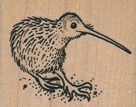Kiwi Bird 2 x 1 1/2-0