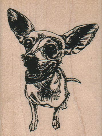 Chihuahua Dog 2 1/2 x 3 1/4-0