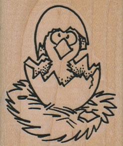 Hatching Chick 1 3/4 x 2-0