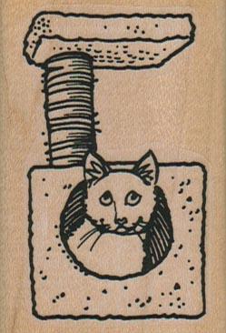 Cat House 1 3/4 x 2 1/2-0