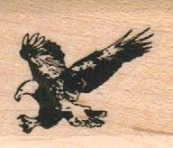 Eagle Flying Left 1 x 1-0