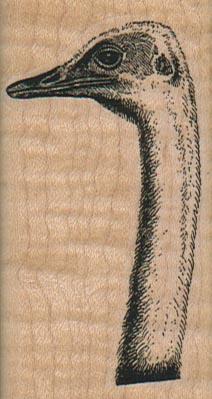 Ostrich Head/Neck 1 1/2 x 2 3/4-0