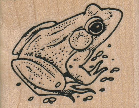 Sitting Frog Back 2 x 1 1/2-0