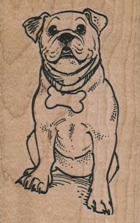 BullDog With Bone Collar 2 x 3-0