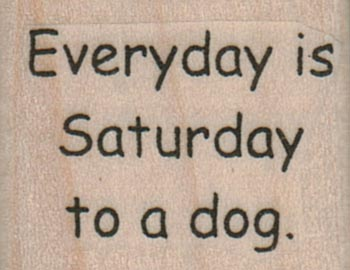 Everyday Is Saturday To A Dog 1 1/4 x 1-0