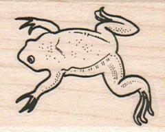 Frog Back 1 1/2 x 1 3/4-0