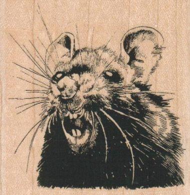 Ratface 2 1/2 x 2 1/2-0