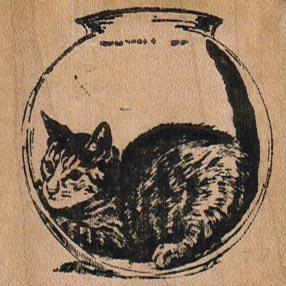 Cat In Fishbowl 2 x 2-0