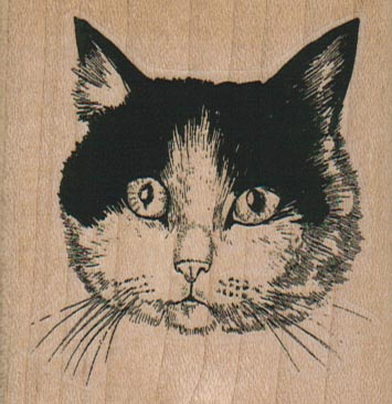 Black & White Cat 2 1/2 x 2 1/2-0