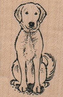 Golden Retriever Dog Sitting 1 1/2 x 2 1/4-0