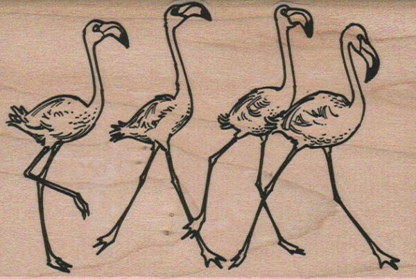 Flamingo Quartet Running 3 x 4 1/4-0
