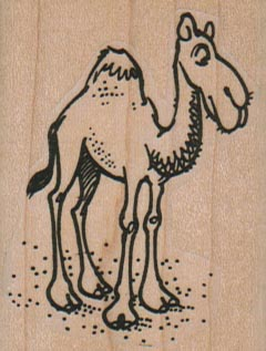 Camel Side 1 3/4 x 2 1/4-0