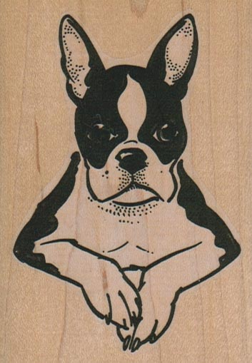 Boston Terrier Paws/Large 2 1/2 x 3 1/2-0