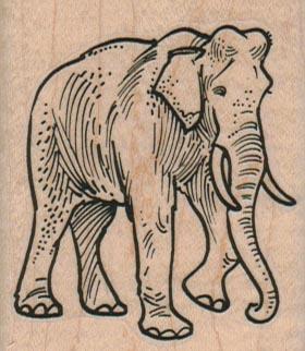 Elephant Lifting Foot 2 x 2 1/4-0