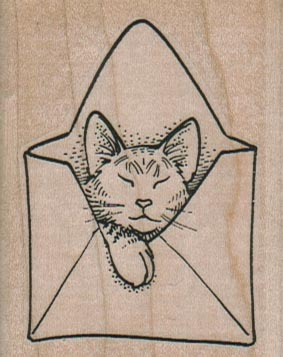 Cat In Envelope 2 x 2 1/2-0