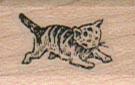 Kitten Running 3/4 x 1-0