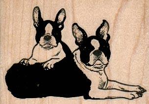 Boston Terrier Pair 3 1/4 x 2 1/4-0