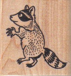 Raccoon Walking Upright 1 3/4 x 1 3/4-0