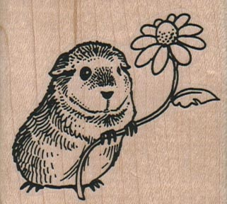 Guinea Pig With Flower 2 1/4 x 2-0