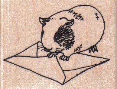 Guinea Pig Sealing Envelope 2 3/4 x 2-0