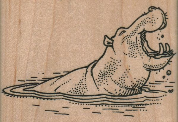 Hippo Laughing 3 1/2 x 2 1/4-0