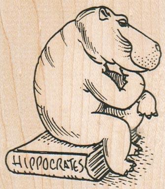 Hippocrates Hippo 2 1/2 x 2 3/4-0