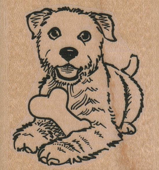 Dog With Bone 2 x 2-0