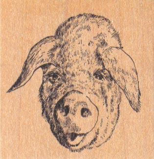 Pig Smile 2 1/4 x 2 1/4-0