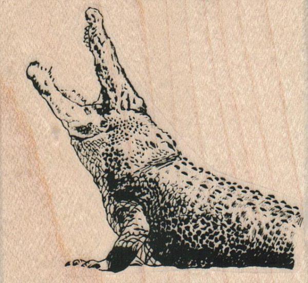 Gator Mouth 2 1/4 x 2-0