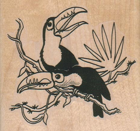Two Toucans On Branch 3 1/4 x 3-0